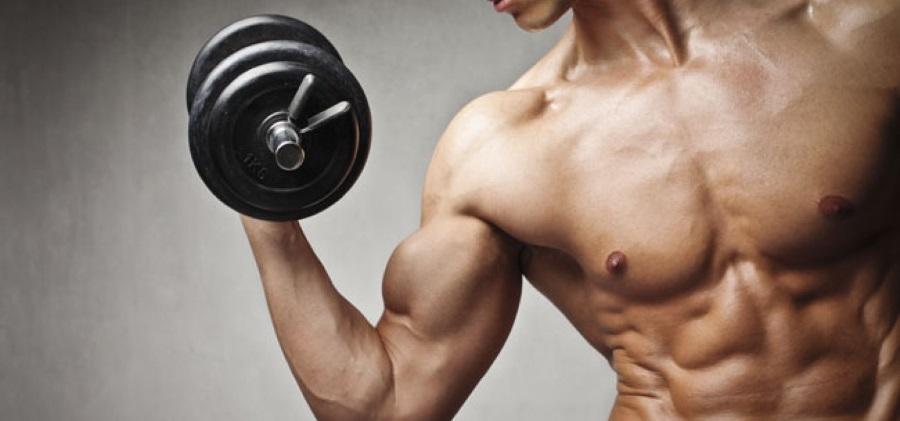 masse musculaire yakha sport
